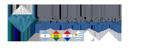 TTI Success Insight Argentina